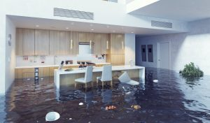water damage restoration logan, water damage repair logan, water damage cleanup logan