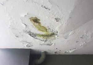water damage cleanup hyrum, water damage restoration hyrum, water damage repair hyrum